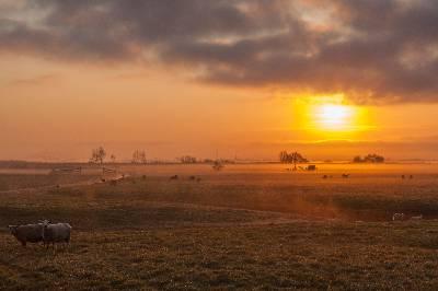 Oer-IJ gebied in gouden gloed